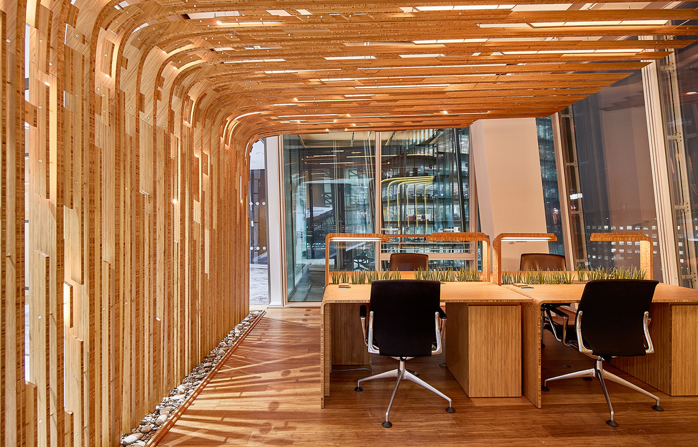 Aldworth James & Bond | Winter Gardens - The Shard | The Living Labs — ceiling ribs using bamboo plywood